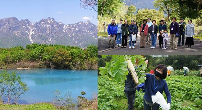 自然豊かな新潟県糸魚川市「1泊2日移住体験」開催レポート