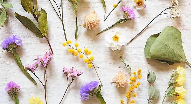 DIY乾燥花製作 花藝設計師教你不同花材的乾燥花製作方式