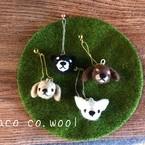 chaco co.wool