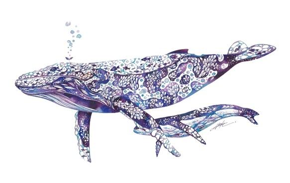 クジラ A4ポスター イラスト タケダヒロキ 通販creemaクリーマ