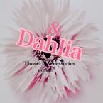 & Dahlia