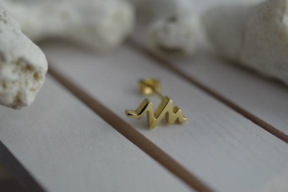 sindenzu pierced earrings (K14 plating)