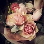 jolie rosa