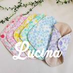 Lucina*momo*