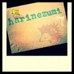 harinezumi12
