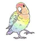Atelier Rainbow*