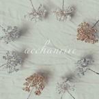 acchanrive(アッチャンリブ)