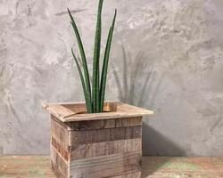 94fdfbccd2 古材 プランター 鉢植え 多肉植物 観葉植物 アンティーク ヴィンテージ 鉢 木製 カフェ CAFE インテリア
