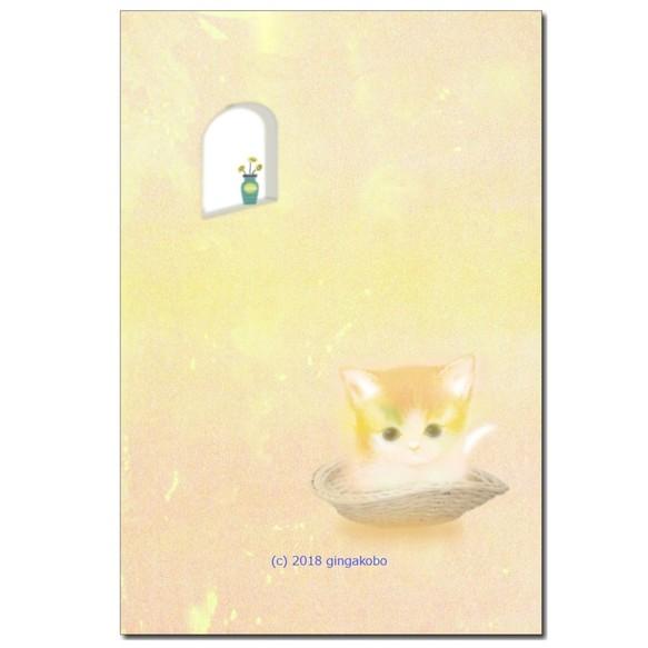 ふんわり子猫 ほっこり癒しのイラストポストカード3枚組no642 カード