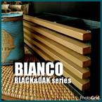 BIANCO workshop