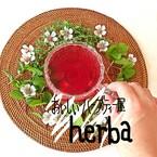 おいしいハーブティー屋 herba