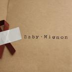 Baby Mignon