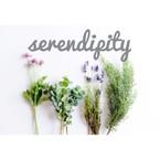 serendipitywedding