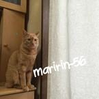maririn-56