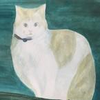 gato  figaro