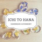 ichi to hana【イチトハナ】
