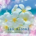 lei aloha!