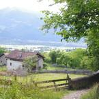 スイスノート