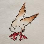 ナツノウサギ