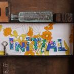 INITIAL material