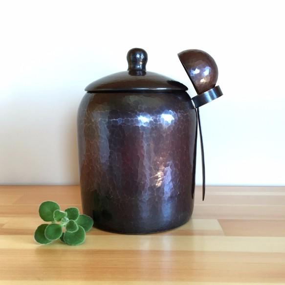 コーヒー 豆 保存 容器 【楽天市場】コーヒー 保存容器の通販