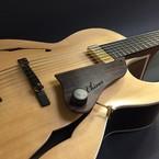 Regal Guitar