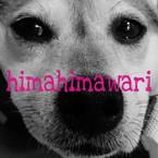 himahimawari
