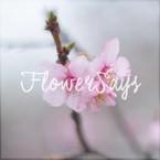 花說/FlowerSays