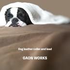 GAON WORKS