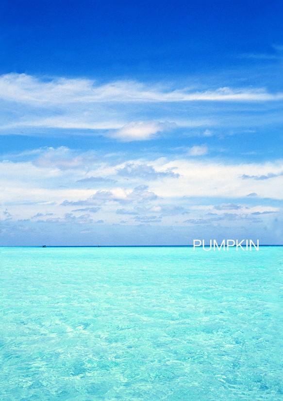 モルディブの渚-Ⅱ PH-A4-076 モ...