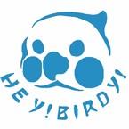 Hey!鳥朋友!