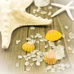 Lino Stones & Shells