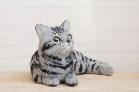 羊毛フェルトの猫アメリカンショートヘア 羊毛フェルト Popisolino