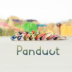 Panduct