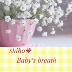 shiho❋Baby's breath