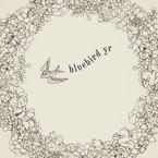 bluebird yr