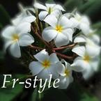 Fr-style