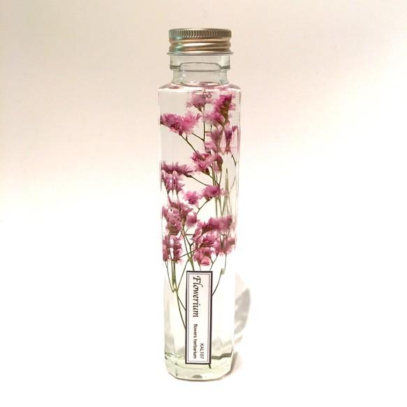 【特別価格】ハーバリウム・flowerium《サマーチェリー》 | KAL107のフラワー・リース