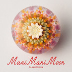 ManiMani Moon