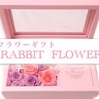 RabbitFlower