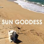 SUN GODDESS COLLARS