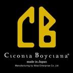 Ciconia Boyciana