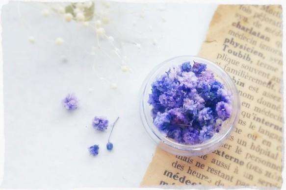 約20~40粒]紫苑色[レジン封入に*染めかすみ草] 樹脂・レジン ...