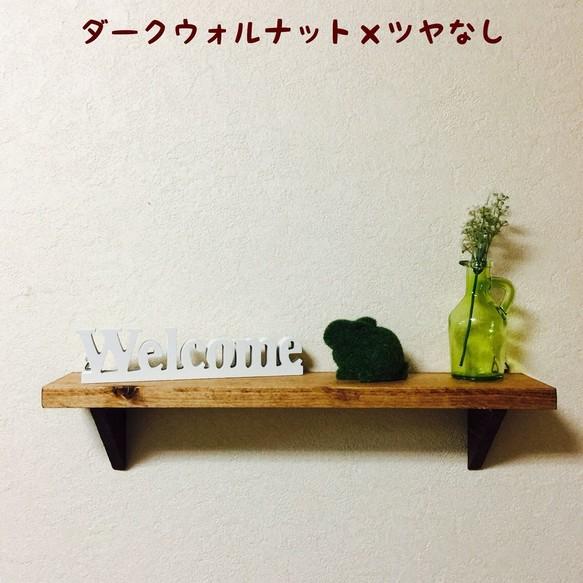 ウォールシェルフ 画鋲で簡単取付 棚 シェルフ ラック aquax 通販