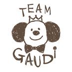 Team Gaudi