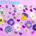 Maho♡押し花素材♡オーダー承ります♡