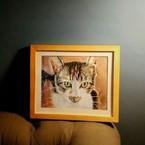萌寵私房畫 手繪寵物畫像