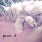♧ gossamer lab ♧