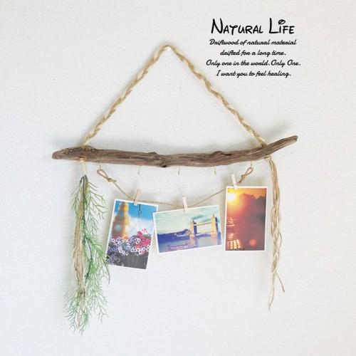 Natural 5 Cabin Hook