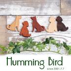 HummingBird1014